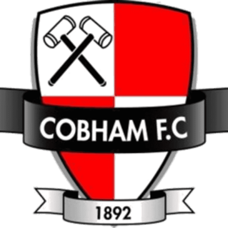 FA Vase preview: H v Cobham