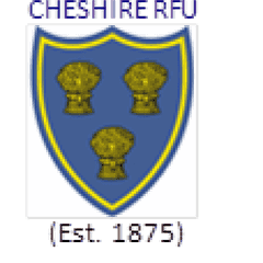 U17's Junior Colts Through to Cheshire Cup Final