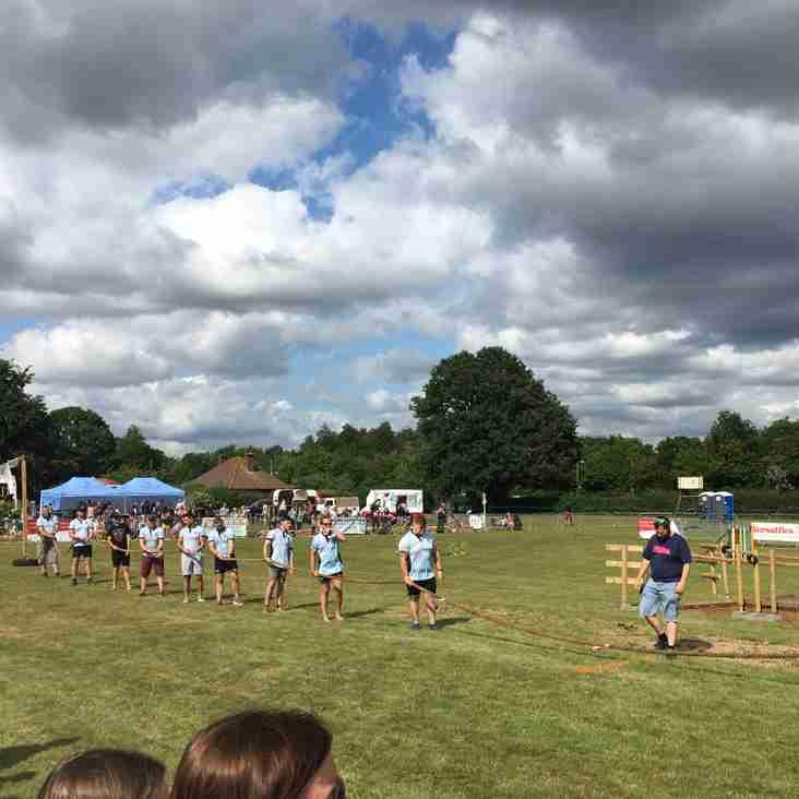 Fordingbridge Festival