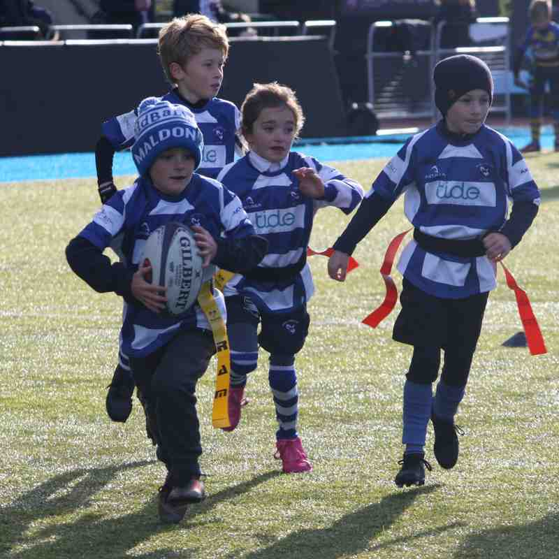 Saracens Work Rate & Honesty Festival