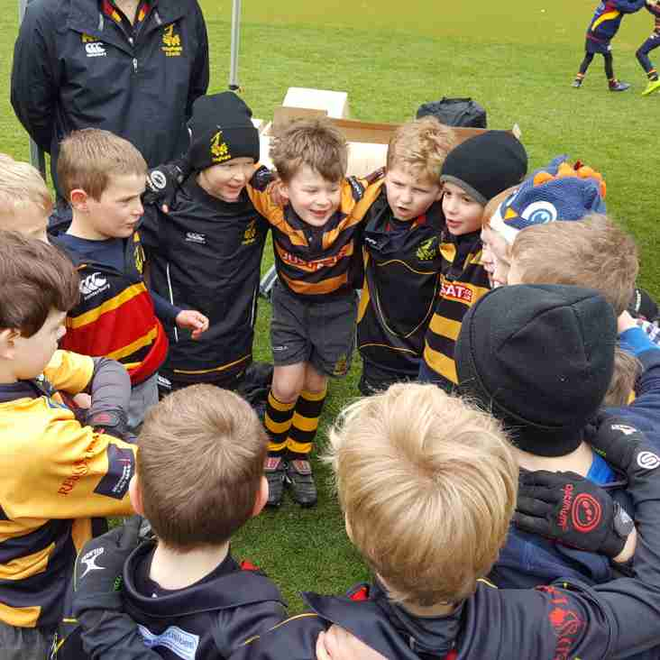 Tring U7 and U6s impress at the Grand Slam Festival