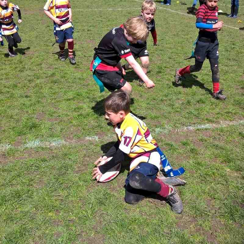 U7s Saracens Tour April 2016