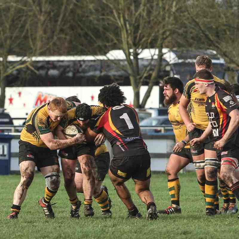 Cambridge RFC 2nd XV v Wolfhounds