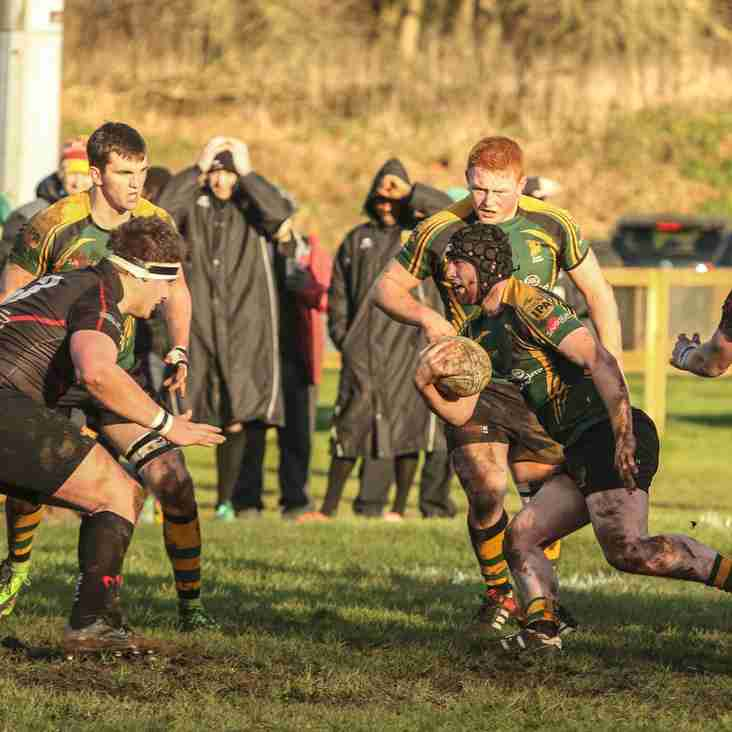 Wolfhounds March On With 12th Straight Win 77-0