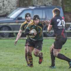 Wolfhounds Win Again