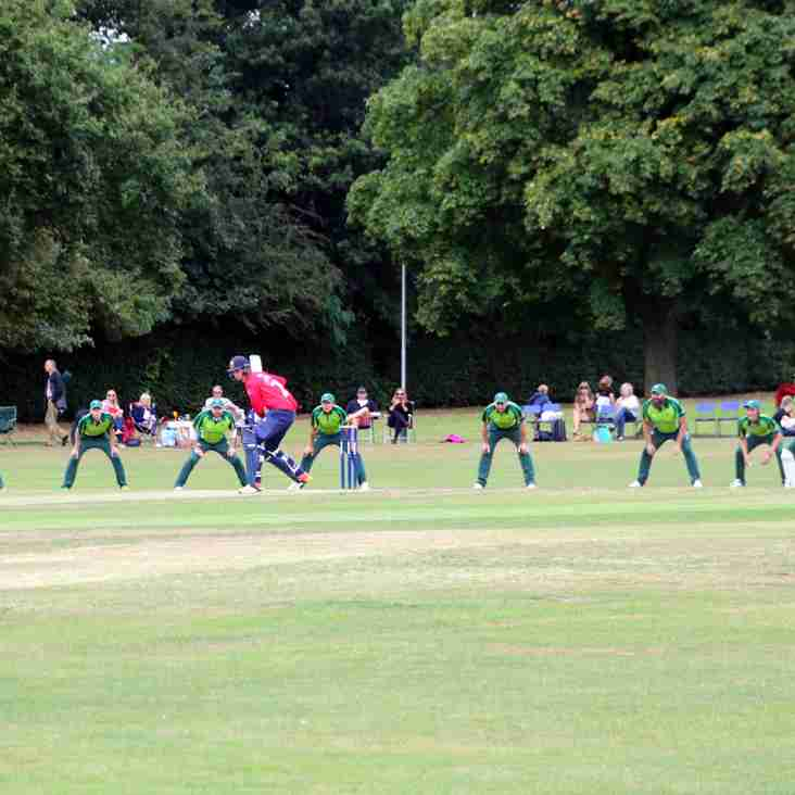 Midweek Whack Action This Wednesday at Upminster Park