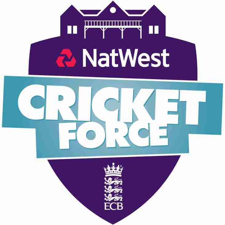 Natwest Cricket Force Day 2017
