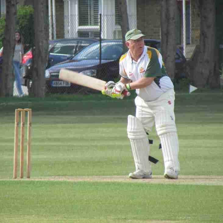 Senior Mini - Cricket Week 19th - 21st August