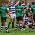 Tynedale 31-29 Preston Grasshoppers