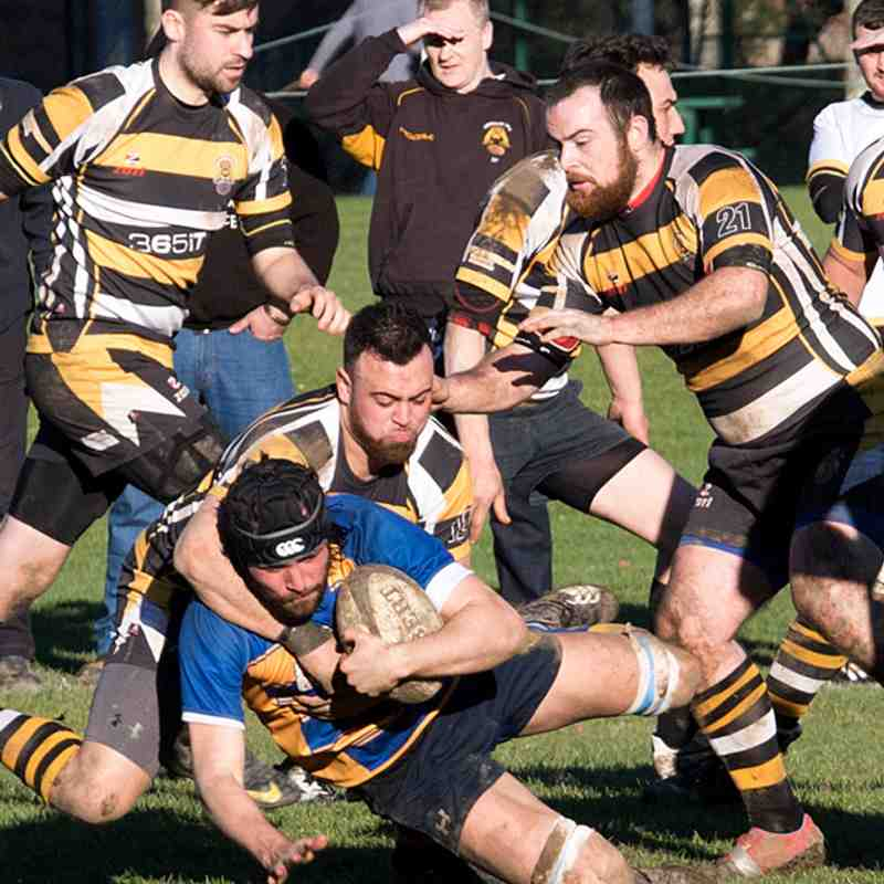 1st 15 at home to Chineham RFC 18th Feb 2017.