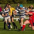 Tynedale 1st XV v Otley, Sat 18th, KO 2pm