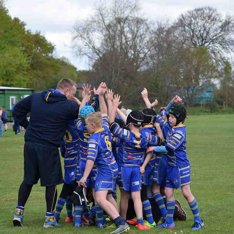 U8s Cobras v Culcheth 23rd April 2017