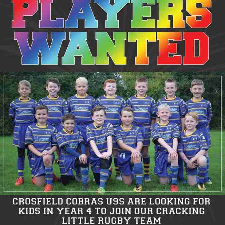 U8s and U9s Cobras are looking for players