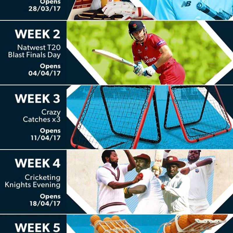 Pitchero - The 5 Week Cricket Sweep
