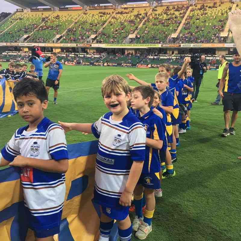 u9s Curtain Raiser for the Western Force