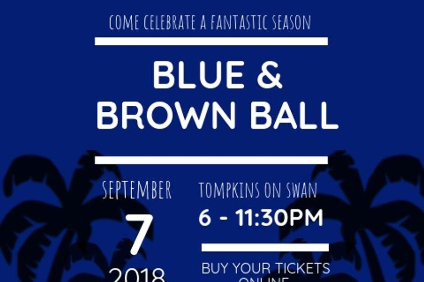 Blue & Brown Ball
