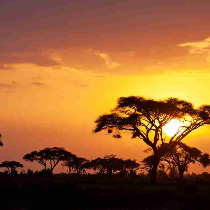 Travelbag offer of the week – Tour of Kenya and 5* Mombasa Beach Hotel Stay