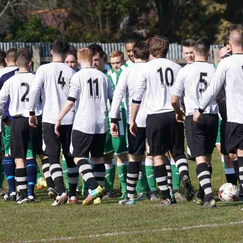 Swans 3 Mere Town 2 - Photos By Trudy Lay