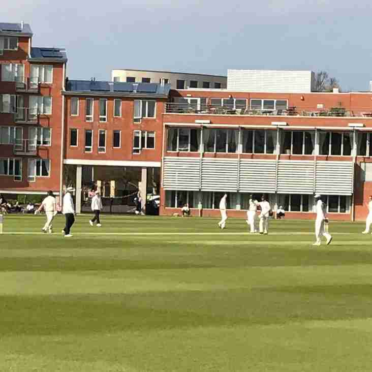 Ts come off second best against Cambridge University