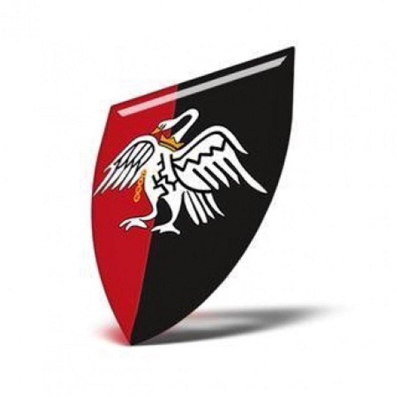 Senior players selected for Buckinghamshire RFU squad