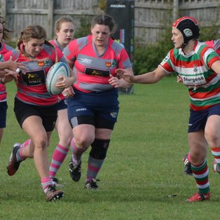 Olney rack up ten tries against Lutterworth