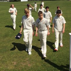From Kwik cricket to colts...