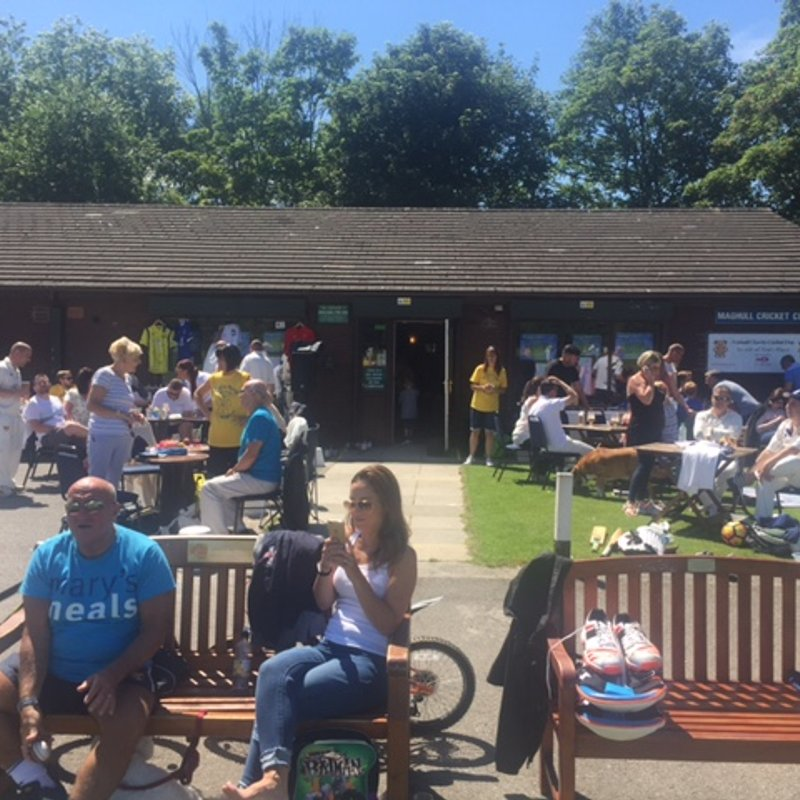 Annual Charity Cricket Day Success