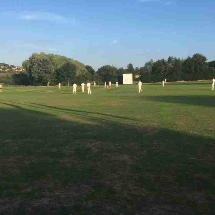 Second XI seal promotion in final game