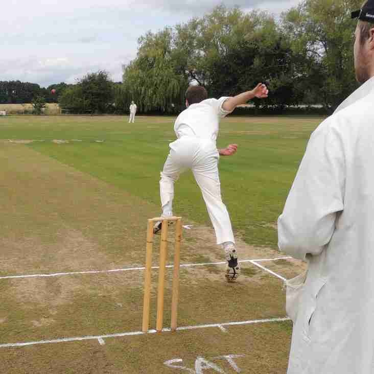 Ever thought of cricket umpiring?