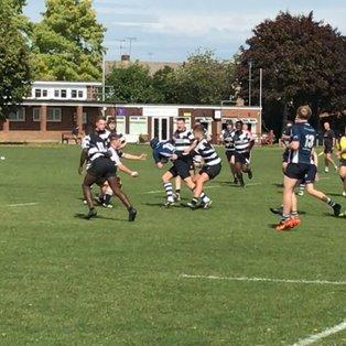 Chelmsford RFC v Thurrock RFC