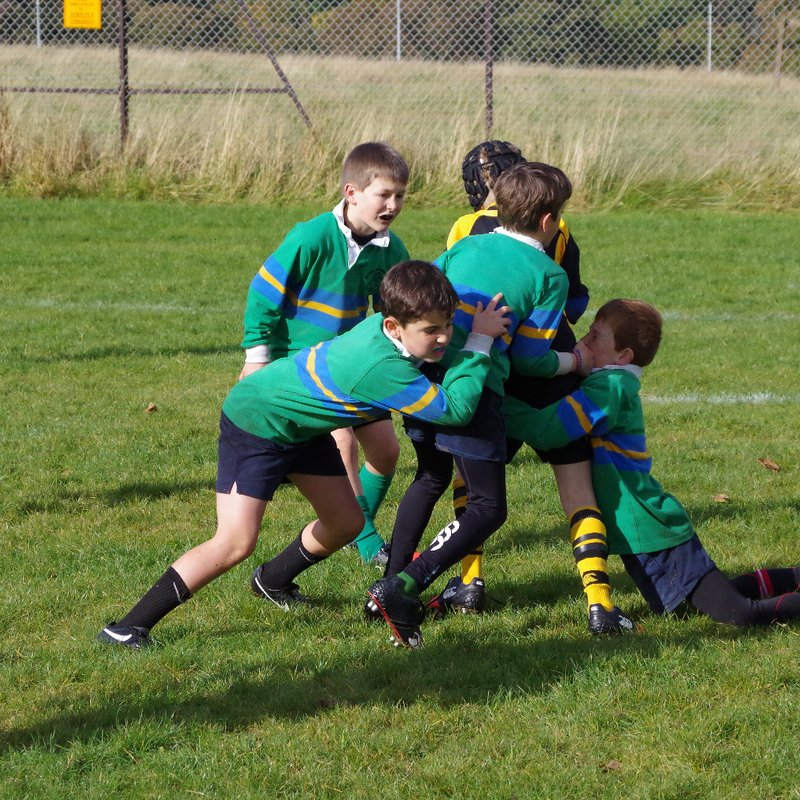 Games for p3 upwards at Linlithgow RFC on Sunday 5th February