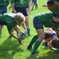 Harpenden RFC vs. Datchworth Rugby Club