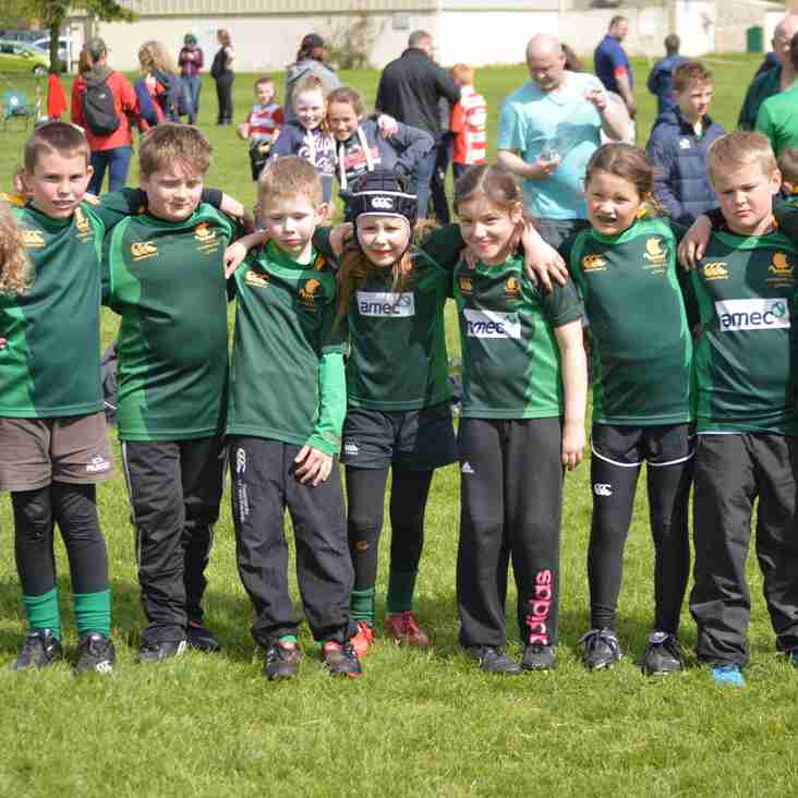 Caithness Junior Rugby Festival (17/3) - Help Required