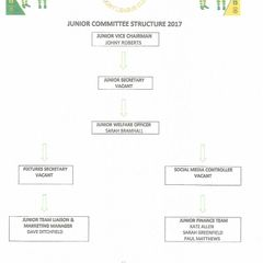JUNIOR COMMITTEE STRUCTURE 2017