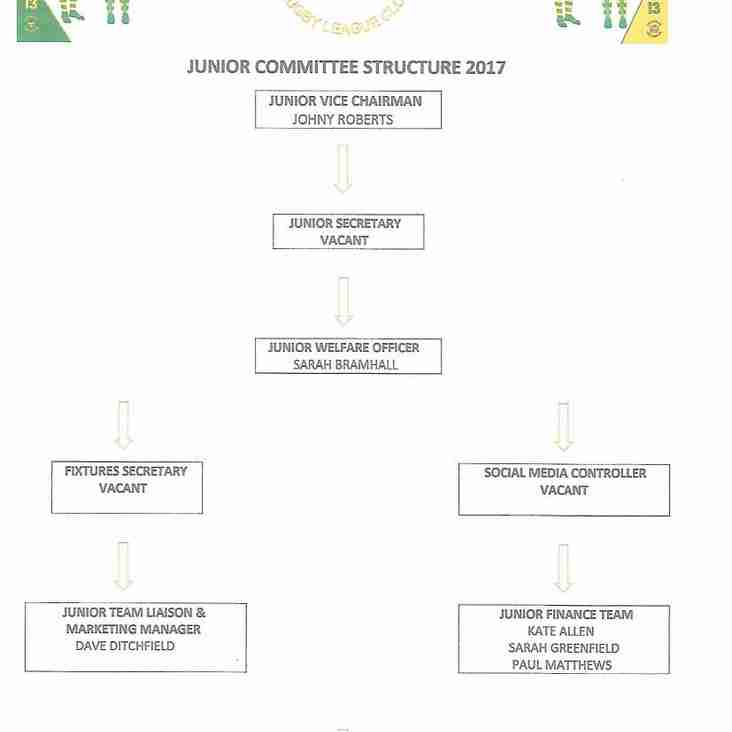 JUNIOR COMMITTEE STRUCTURE 2017