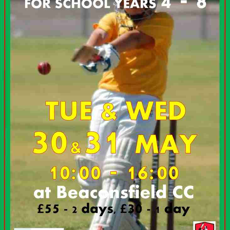 Half Term Cricket Camp - Years 4 - 8