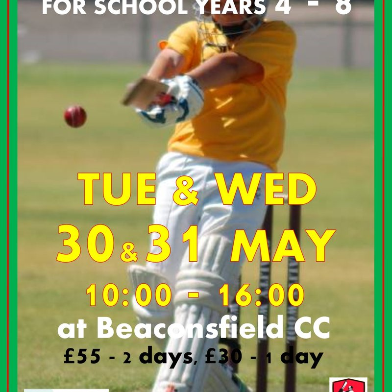 Half Term Cricket Camp - Years 4 - 8
