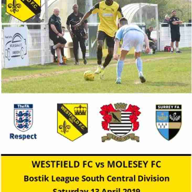 Matchday Programme vs Molesey now online