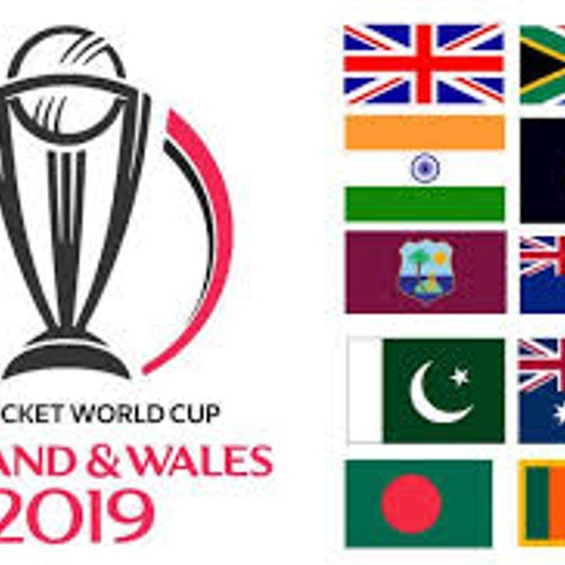 Cricket World Cup at Mitcham CC