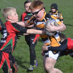 U9s v Farnley Falcons 09/04/16