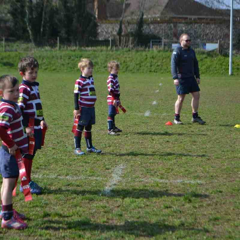 Shelford Mini's (selection of photos)