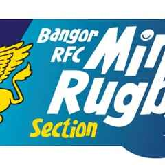 Mini Rugby Registration Evening