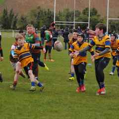 Mini Rugby - 30th April