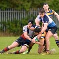 Bangor lose out to Harlequins in Senior Cup