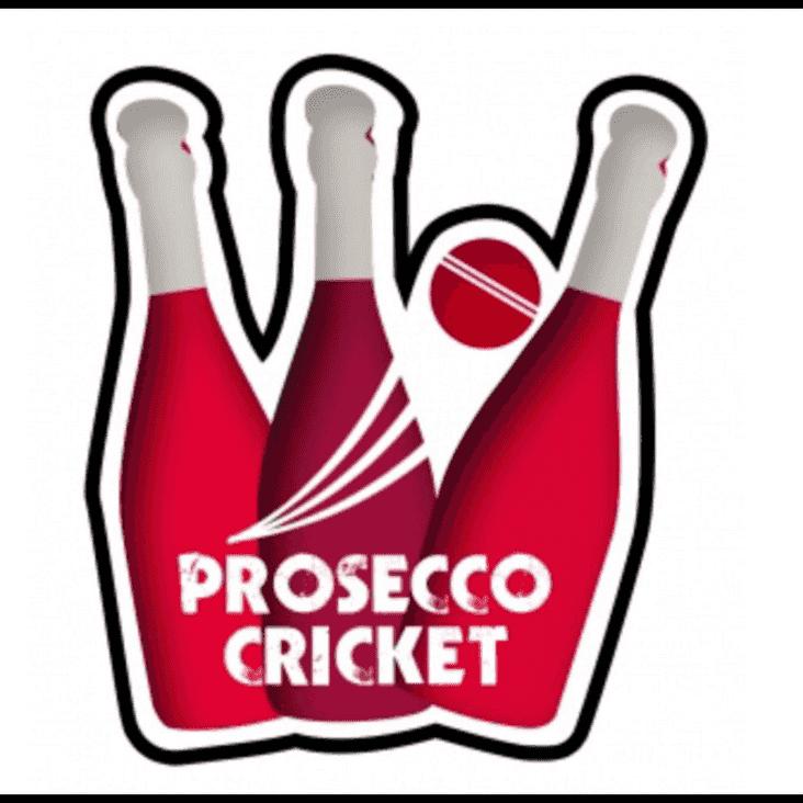 Ladies Cricket Drinking Bash