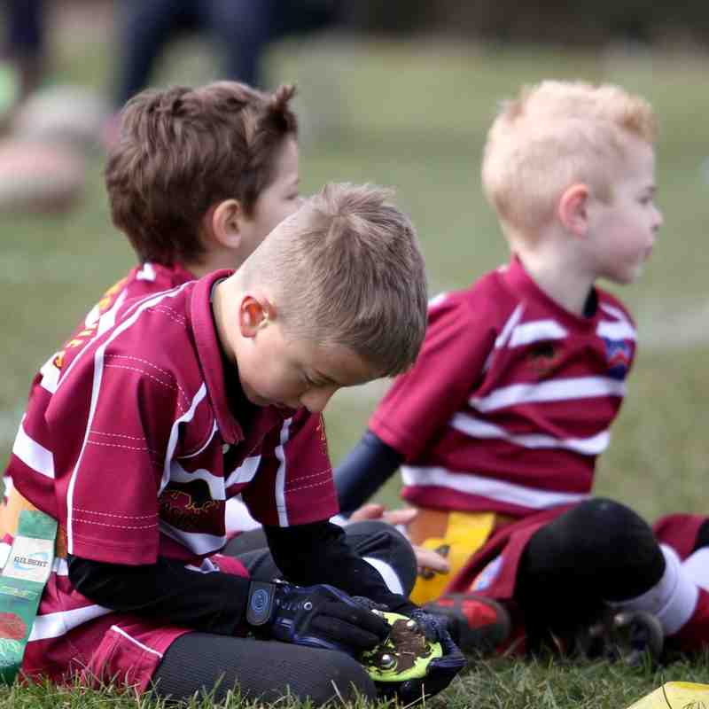 Wirral U7s rugby
