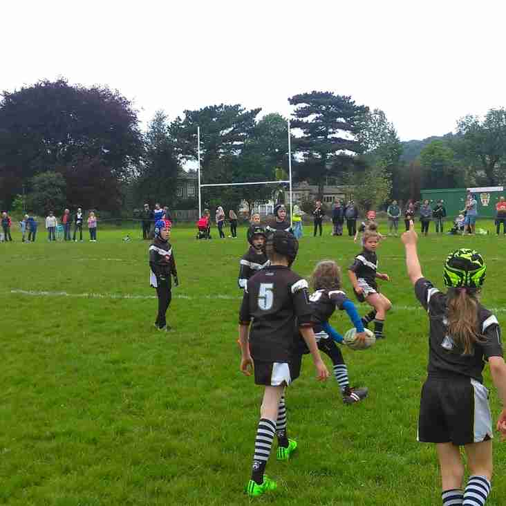 Match Report - Keighley Albion U9s v Greetland Allrounders U9s