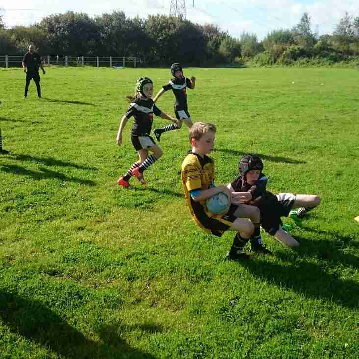 Match Report - Greetland Allrounders U9s v King Cross U9s