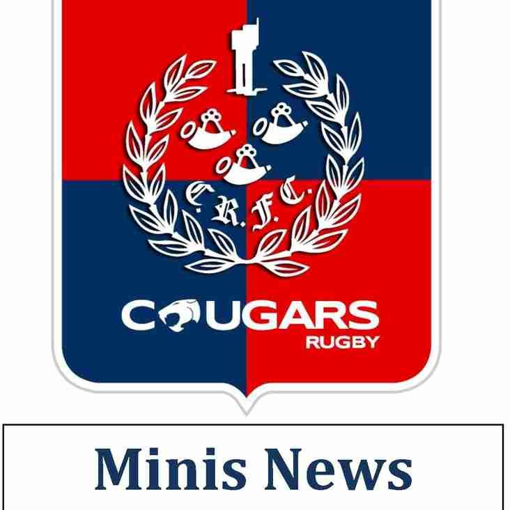 Minis Newsletter Wednesday 19th September