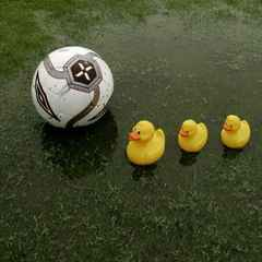 Today's friendly is off